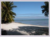 Florida Keys beach photo